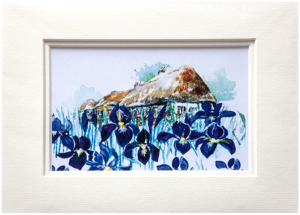 Mounted Print in Summer Iris design