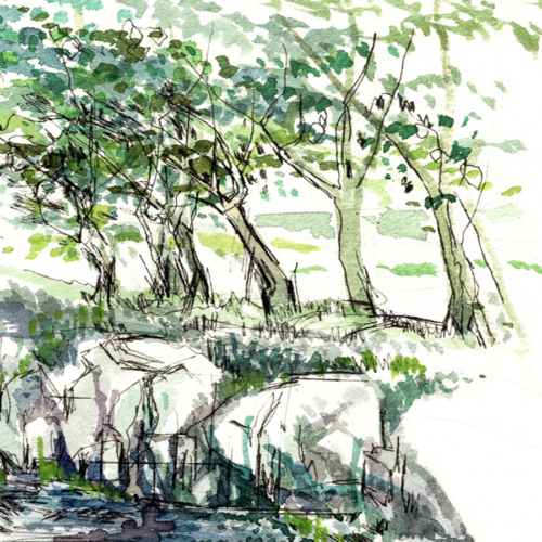 Bank Side An original landscape watercolour painting of Ireland by artist Alison Erridge.
