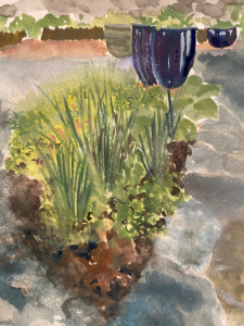 watercolour of the front bed in our cottage garden by Lucy Erridge